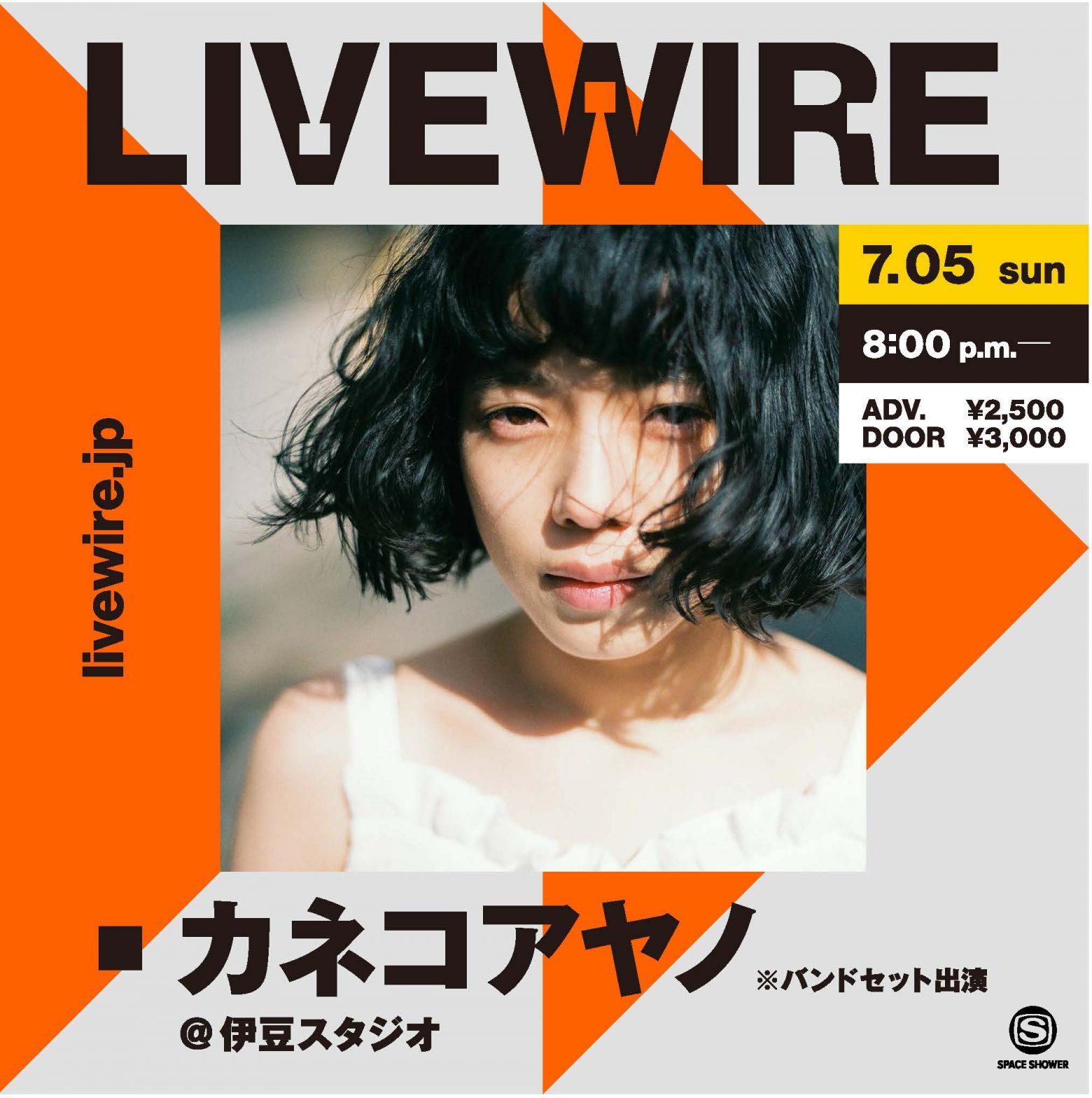 「LIVEWIRE カネコアヤノ@伊豆スタジオ」